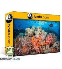 دانلود آموزش Lynda Learning Underwater Photography