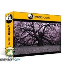 دانلود آموزش Lynda Infrared Photography: Nature and Landscapes