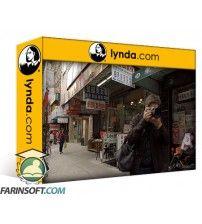 دانلود آموزش Lynda Learning to Critique Photos