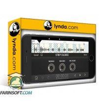 دانلود آموزش Lynda Learning Ferrite