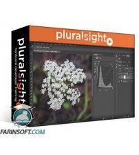 دانلود آموزش PluralSight Photoshop CC Working with Curves