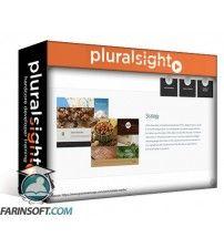 آموزش PluralSight User Experience: The Big Picture