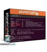 آموزش PluralSight Penetration Testing OSINT Gathering with Recon-ng