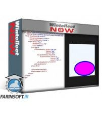 آموزش WintellectNow Vector Graphics