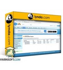 آموزش Lynda Salesforce: Accounts and Contacts