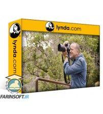 دانلود آموزش Lynda Learning Natural Light Portrait Photography