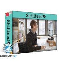 آموزش SkillFeed Programming Data Visualizations: A Coding Toolkit for Processing