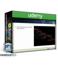 دانلود آموزش Udemy Introductory Forex Trading Course