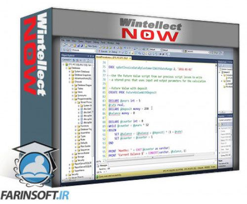 آموزش WintellectNow Stored Procedures