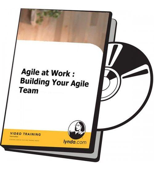 آموزش Lynda Agile at Work Building Your Agile Team