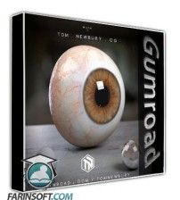 دانلود آموزش Gumroad Creating a Realistic Human Eye in CG
