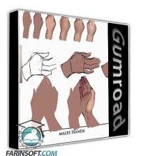 دانلود آموزش Gumroad Hands101 Voice over