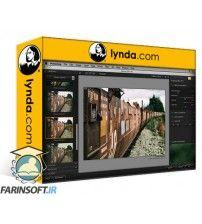 دانلود آموزش Lynda Learning Analog Efex Pro