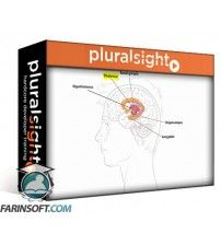 آموزش PluralSight Introduction to Emotional Intelligence